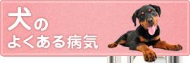 犬の よくある病気
